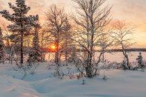 Efektowne światło zachodzącego Słońca