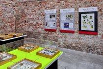 Ekspozycja galerii Biorama Projekt