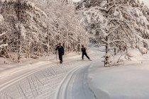 Fińscy narciarze biegowi