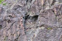 Geologia na żywo