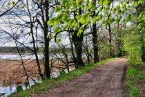 Grobla - szlak rowerowy - w rezerwacie Łężczok