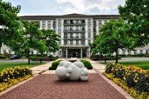 Hotel w głównym parku uzdrowiska