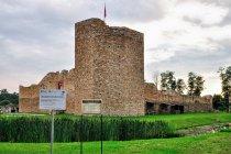 Inowłódz - ruiny zamku