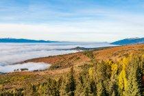 Inwersja termiczna - morze mgieł