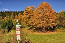 Jesień na słowackich szlakach