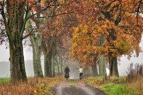 Jesienni rowerzyści