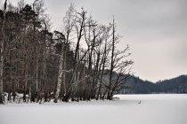 Jezioro Lubygość