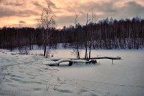 Jezioro niedaleko Nowych Czapli