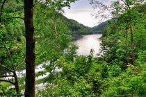 Jezioro przez Bad Lauterberg