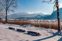 Jezioro Walchsee