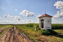 Kapliczka przy szlaku w Wyszatycach