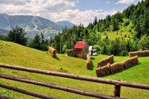 Karpacki krajobraz
