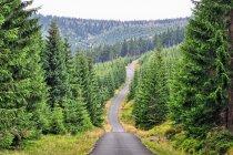 Kilkanaście kilometrów asfaltu w kierunku Jakuszyc