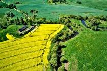 Kociewskie krajobrazy