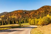 Kolory jesieni na zjeździe do Liptowskiego Mikułasza