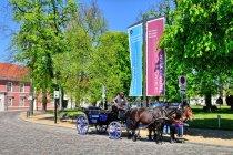 Koński zaprzęg z Rheinsbergu