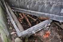 Kość piszczelowa w grobowcu w Borkowie