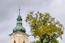 Kościół w Radziechowach