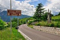 Kraina szczepu trentodoc w Trentino