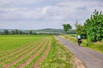 Krajobraz Dolnej Saksonii