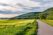 Krajobraz Frankonii