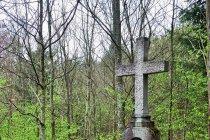 Krzyż w środku lasu z 1927 roku