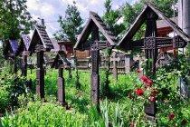 Krzyże na cmentarzu