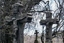 Krzyże na cmentarzu w Ciechani