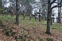 Krzyże na cmentarzu wojskowym w Blechnarce