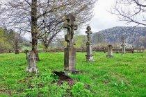 Krzyże na łemkowskim cmentarzu w Nieznajowej
