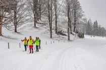 Kursy narciarstwa dla słabo widzących