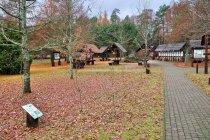 Leśny Ogród Edukacyjny w Żylinach