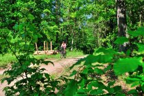 Leśny szlak rowerowy na Kociewiu