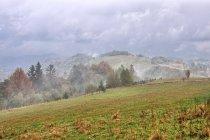 Mgły nad Beskidem Śląskim