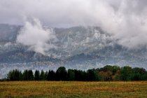 Mgły nad Węgierską Górką