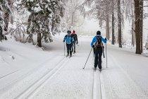 Mijani narciarze z Czech