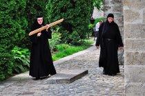 Mniszki wystukujące rytm na drewnianej desce