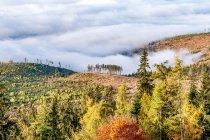 Morze mgły nad Kotliną Liptowską