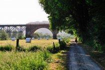 Most kolejowy niedaleko Boffzen