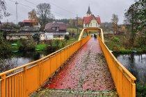 Most pieszo-rowerowy w Męcikale