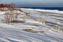 Na biegówkach nad Bałtykiem