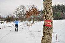 Na biegówkach po szlaku nordic walking