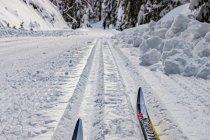 Na biegówkach w Górach Bialskich