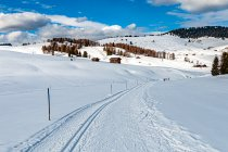 Na biegówkowym szlaku na Alpe di Siusi