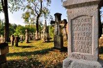 Na cmentarzu w Radrużu