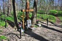 Na cmentarzu w Salinie