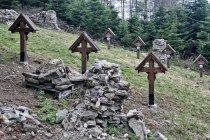 Na cmentarzu wojskowym nr 48