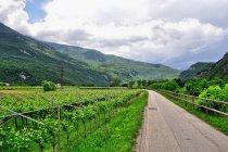 Na drodze rowerowej Mori-Torbole