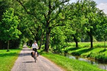 Na drodze rowerowej Renu