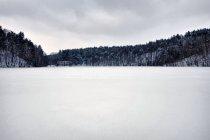 Na jeziorze Zamkowisko